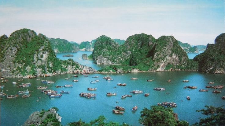 Immerse yourself in the charm of #VietnamTours and lost into the diversity of Vietnam. Check out more @ http://www.welcomevietnamtours.vn/