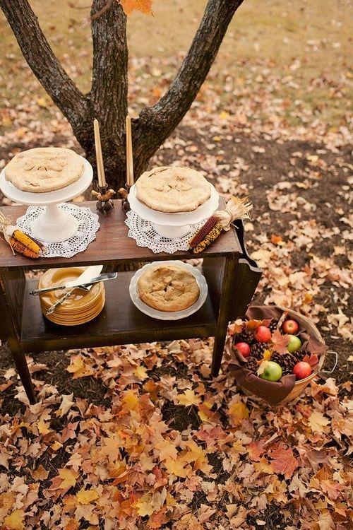 """crisp-season: """"wicked-autumn: """" Halloween everyday """" autumn leaves~haunted trees """""""