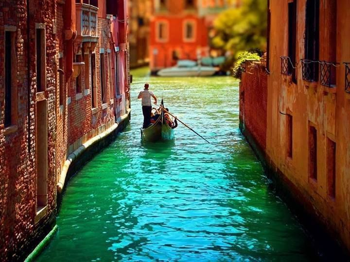 Dat Nature: The beauty of Venice, Italy Desktop Wallpaper