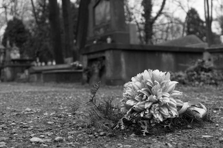 #Cemetery flower