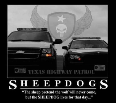 Texas Highway Patrol- FEARED BY MANY RESPECTED BY ALL!!!!