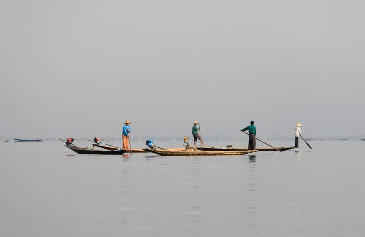 https://flic.kr/p/GuBMzF | Inle Lake, Myanmar - Local Fisherman | Inle Lake is a freshwater lake located in the Nyaungshwe Township of Taunggyi District of Shan State, Myanmar (Burma). It is the second largest lake in Myanmar with an estimated surface area of  116 km2, and one of the highest at an elevation of 880m.   Most transportation on the lake is traditionally by small boats, or by somewhat larger boats fitted with single cylinder inboard diesel engines. Local fishermen are known for…