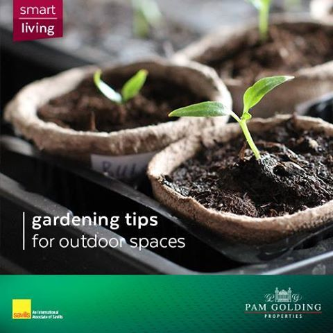 A well-manicured garden can truly enhance a buyer's first impression. Look at these insightful tips on how to improve your home's outdoor space. via: Country Living #garden #spring #tips