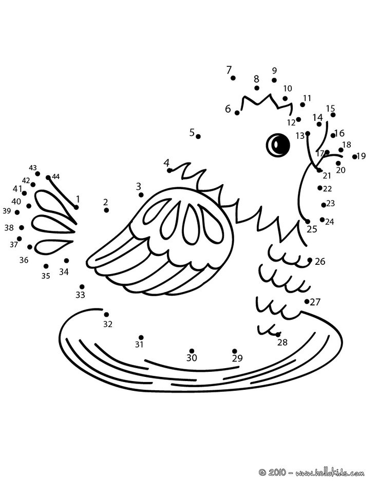 hen dot to dot game printable connect the dots game