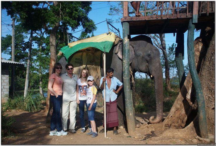 Слёзы слона и.. счастливые туристы.  Шри-Ланка.