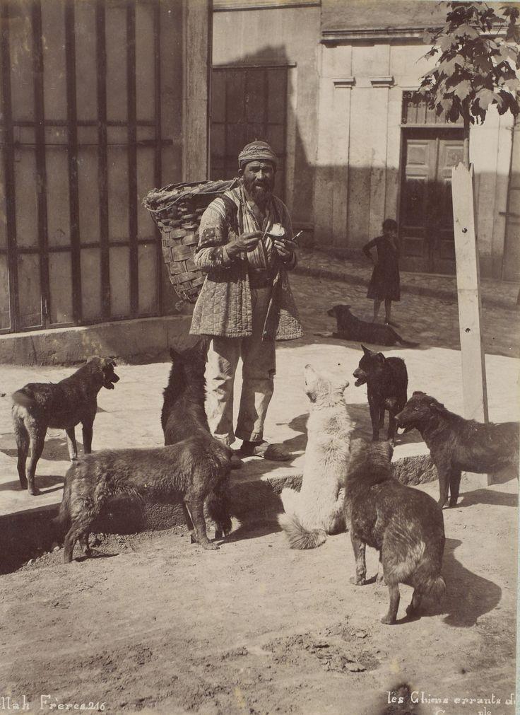 Sokak Köpekleri Abdullah Fréres