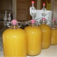 making Hard Pear Cider