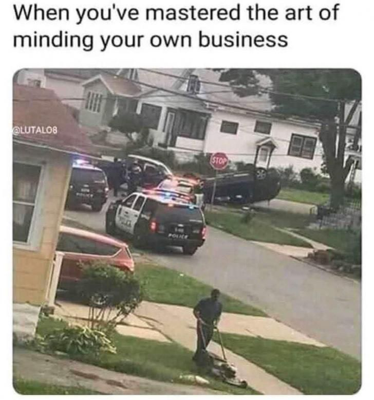 Master Of Mind Your Own Business Silly Memes Funny Pictures Stupid Funny Memes