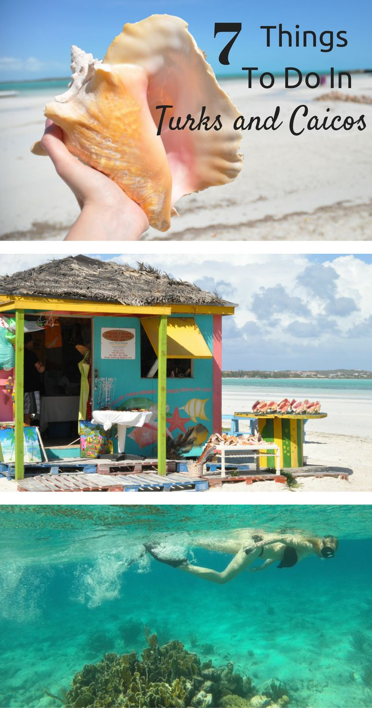 7 Things you can't miss on your next trip to the Turks and Caicos!