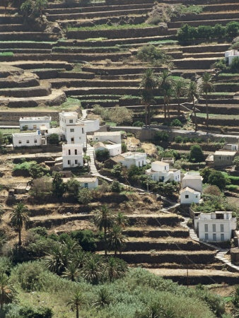 Terrace landscape at beautiful La Gomera