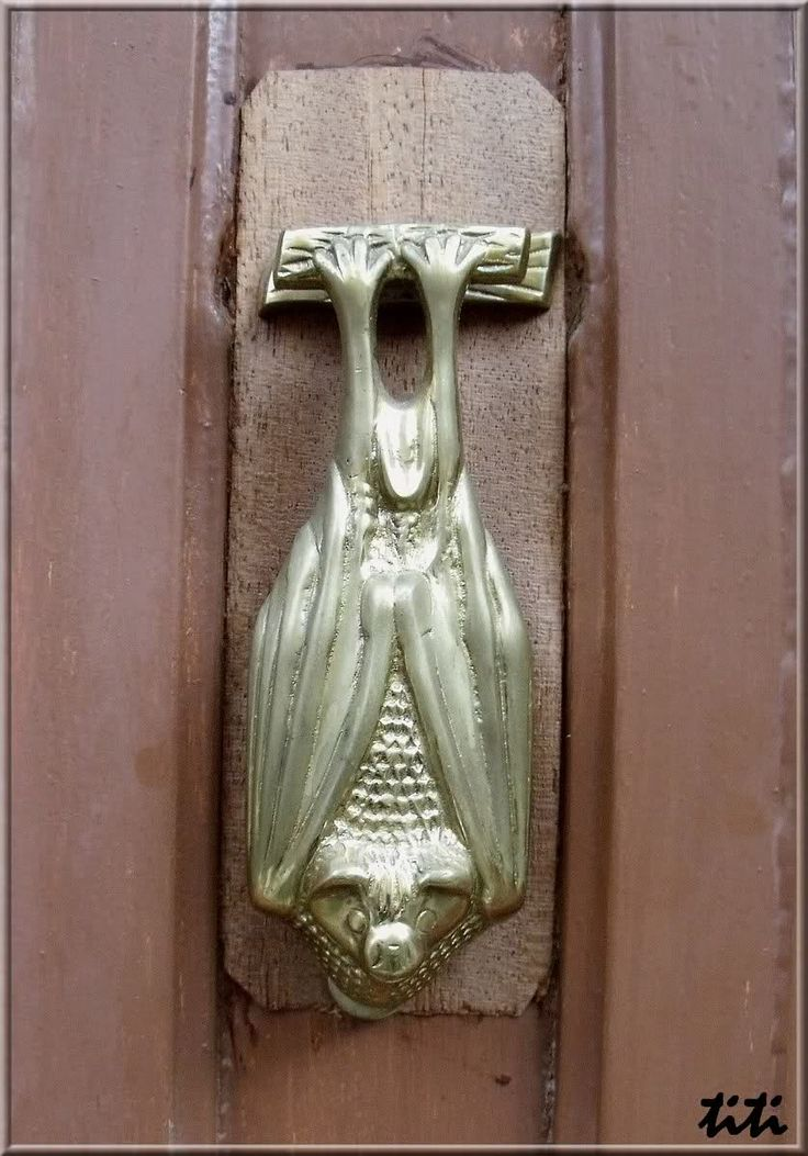 Bat Door Knocker | Serrière                              …                                                                                                                                                                                 Plus