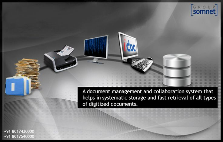 Points That Insure Good Results When Working With A Document Management System.