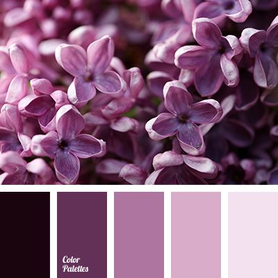 Color Palette #2830 (Color Palette Ideas)