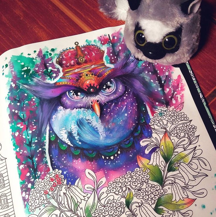 "153 Likes, 4 Comments - Rachel Sato ♉ (@rsato_10) on Instagram: ""Corujinha com cara de brava.  Owl with an angry face.  #coloredpencil#dagdrömmar…"""