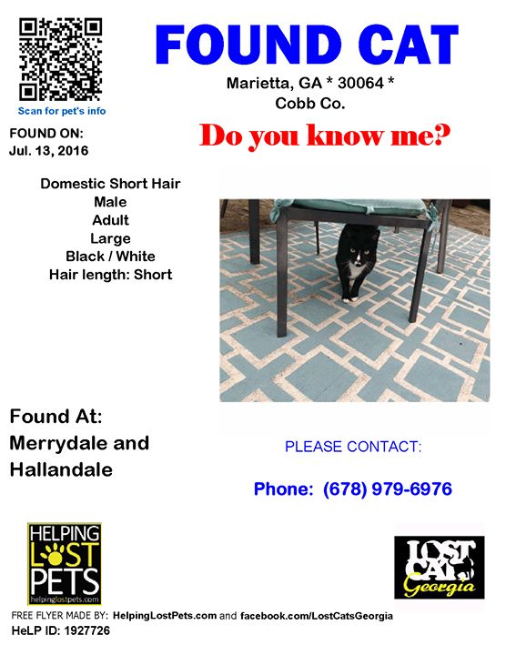 Do you know this Cat? #Marietta (Merrydale & Hallandale)  #GA 30064 #Cobb Co.  #Cat 07-13-2016! Male #Domestic Short Hair Black / White/Tuxedo male with faded blue collar showed up in my back yard last summer.  Up until about last week he would not let me get close enough for pictures. Now he lets me pet him but is still fearful.  I feed him twice a day and he stays mostly in my back yard.  CONTACT Aleeamajor@bellsouth.net Phone: (678) 979-6976  More Info Photos and to Contact…