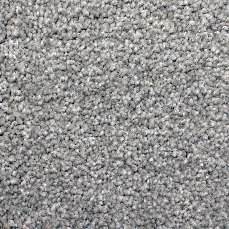 STAINMASTER PetProtect Briarcliffe Hills 12-ft Textured ...