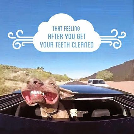 That feeling after you get your teeth cleaned. #DentalHygienist #DentalHygiene #RDH www.Hygienetown.com @Hygienetown