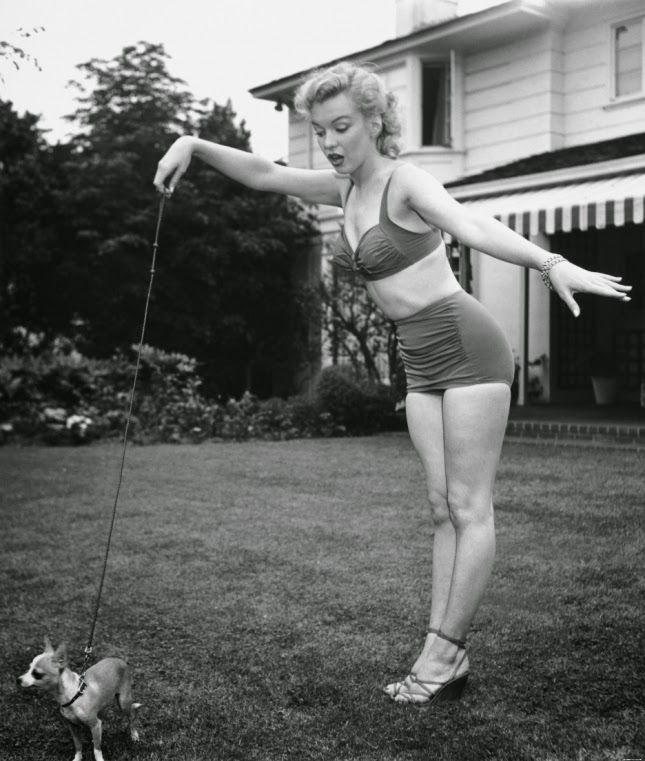 διάσημες γυναίκες με σκύλους: Μέρλιν Μονρόε...
