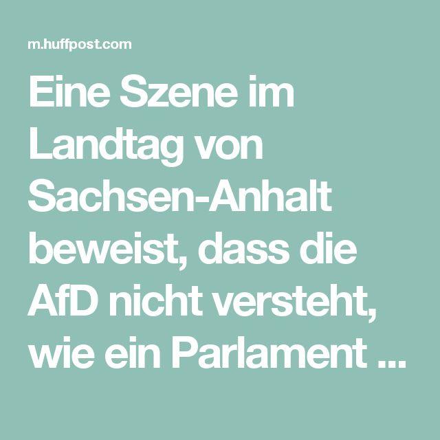 Eine Szene im Landtag von Sachsen-Anhalt beweist, dass die AfD nicht versteht, wie ein Parlament funktioniert | HuffPost Germany