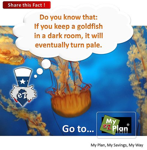 """Unthinkable Fact 