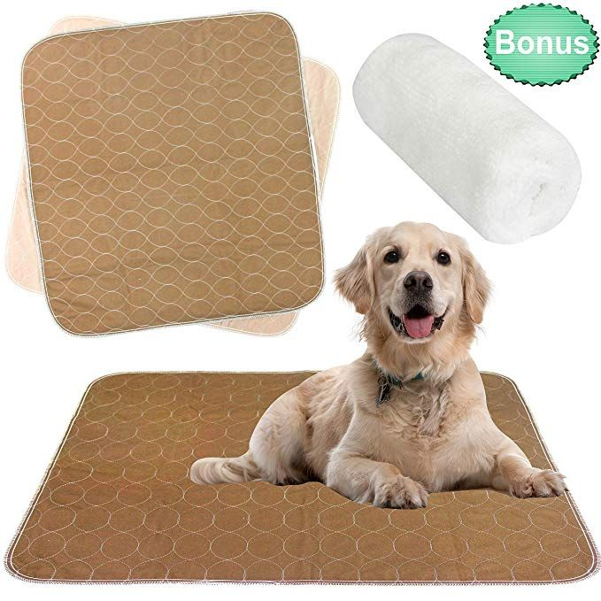 Pet Training and Puppy Pads Extra Absorbent 50-Pack