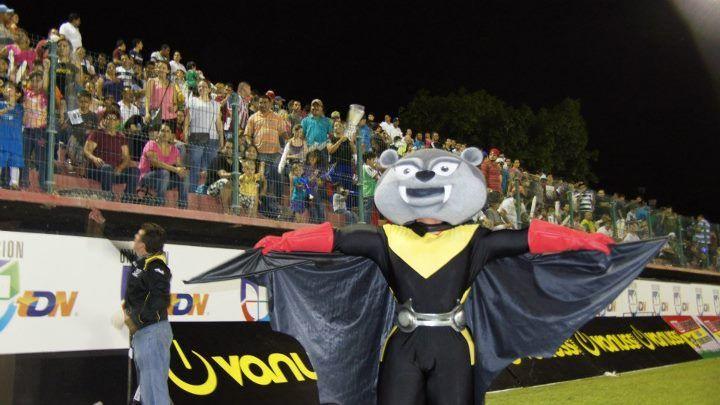 MURCY LA MASCOTA | Murciélagos FC | Pinterest
