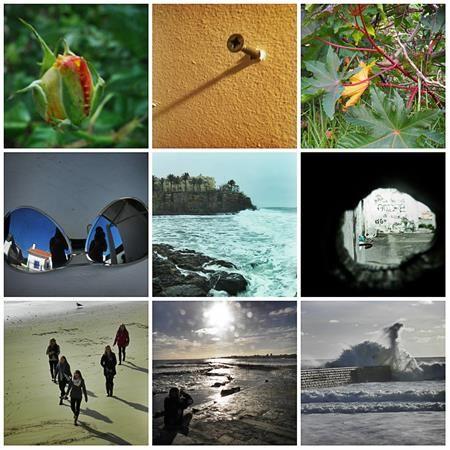 4 perguntas com resposta sobre o que é a fotografia do ponto de vista de vários fotógrafos amadores.