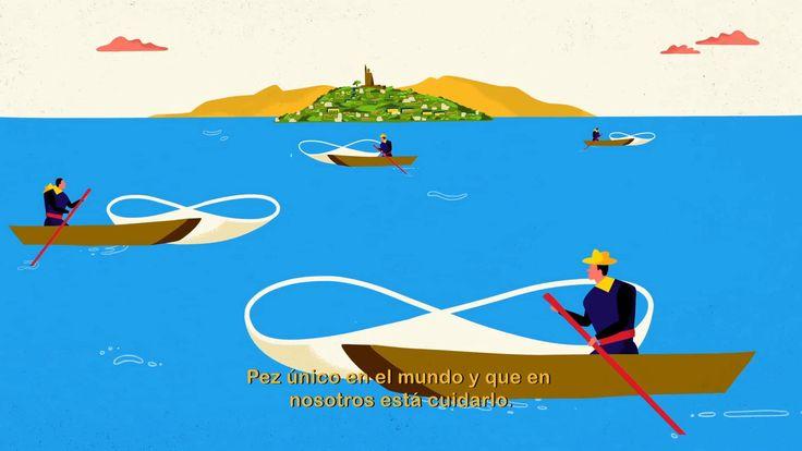 Contes animés en langue indigène (et traduits) -  Les P'urhépecha - La Vierge de la Santé et le poisson blanc du Michoacán