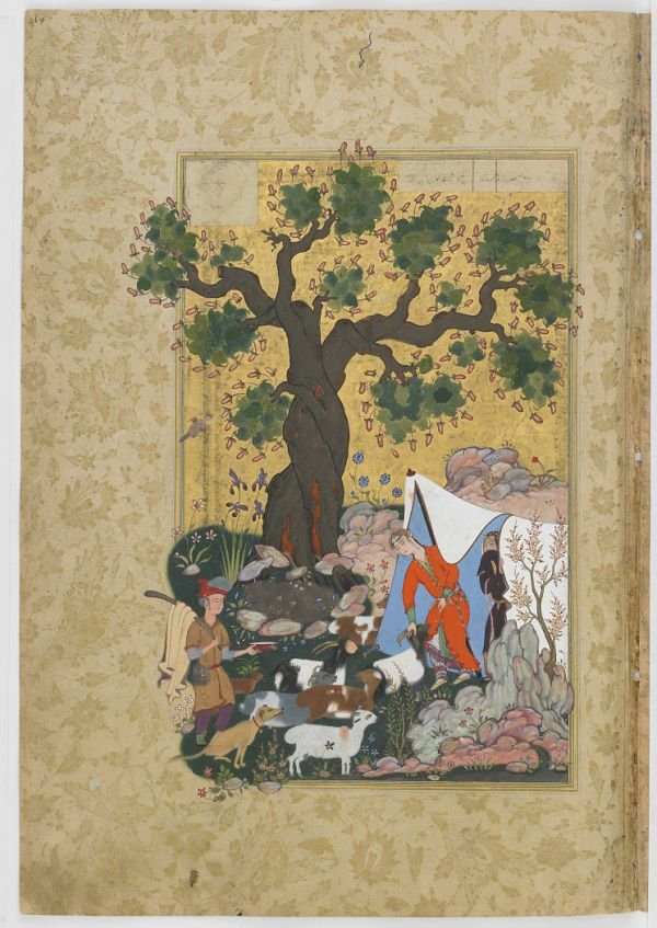 Folio from a Haft Awrang (Seven Thrones) by Jami (d.1492); recto: Majnun comes before Layli disguised as a sheep; verso: text  TYPE Manuscript folio MAKER(S) Author: Jami (died 1492) HISTORICAL PERIOD(S) Safavid period, 1556-1565 SCHOOL Khurasan School MEDIUM Opaque watercolor, ink and gold on paper DIMENSION(S) H x W: 34.2 x 23.2 cm (13 7/16 x 9 1/8 in) GEOGRAPHY Iran