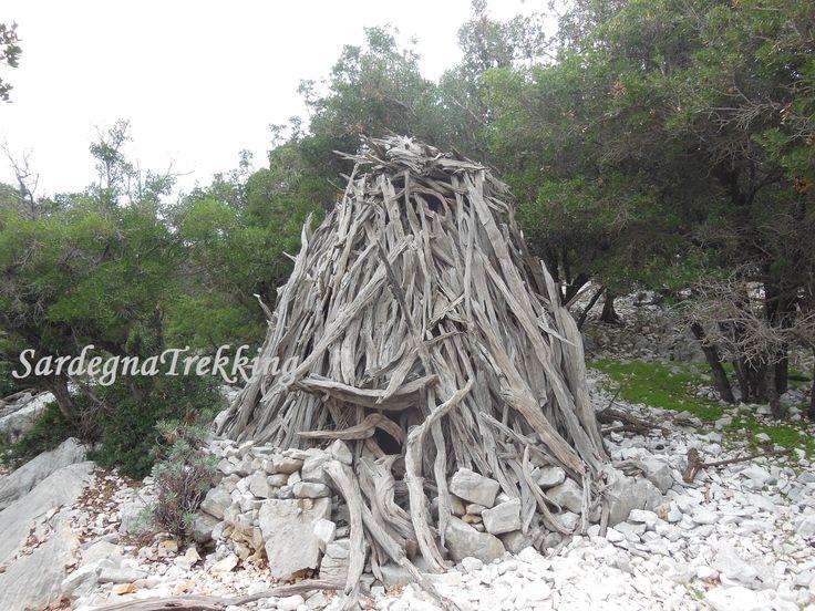 Coile del Supramonte http://sardegnatrekking.wordpress.com/trekking/