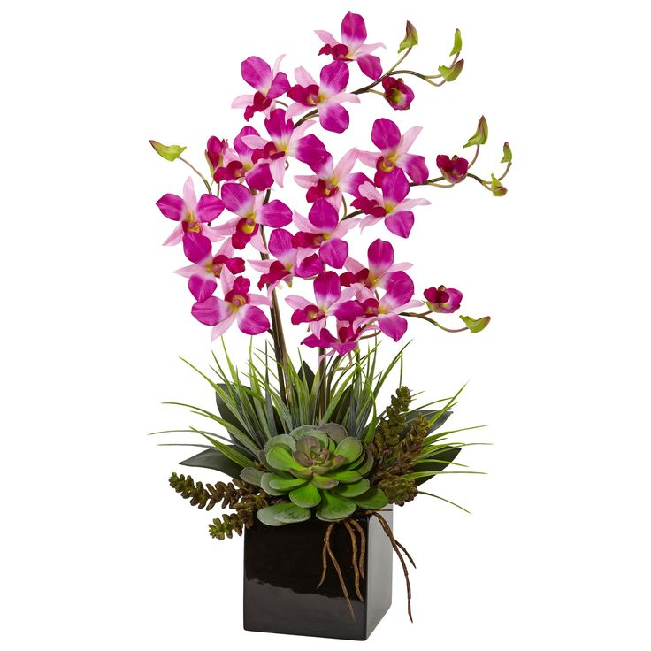 Purple and green combine in this beautiful artificial orchid and succulent arrangement. Enjoy one of nature's favorite color combinations in any room where you desire a touch of elegance and calm.