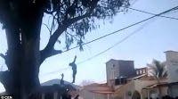 Εικόνες ΣΟΚ από το Μεξικό: Εξαγριωμένο πλήθος λιντσάρει και κρεμάει ληστή σε δέντρο! (ΦΩΤΟ)
