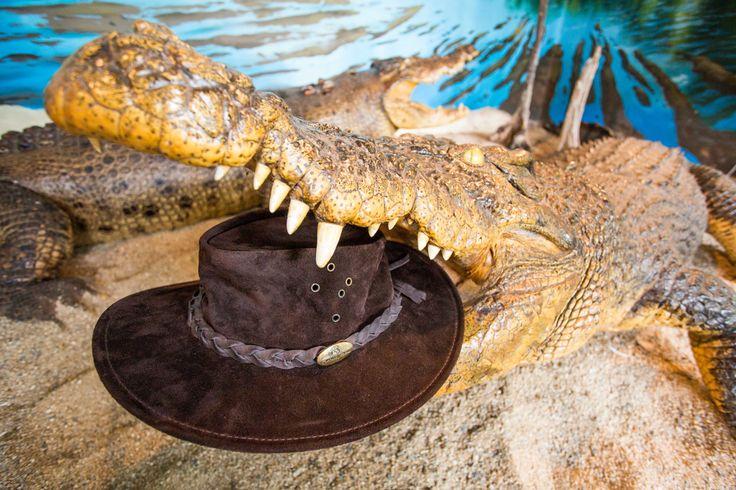 Outback Matty Hat - Jacaru Australia