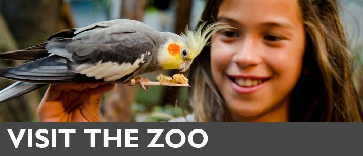 Woodland Park Zoo's award-winning exhibits provide the perfect setting for your next group trip! Located in Seattle, Washington.