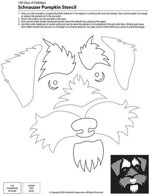 Schnauzer Pumpkin Stencil also great template for sewing