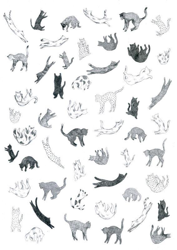 Cats falls by Yasmine Gateau, via Behance