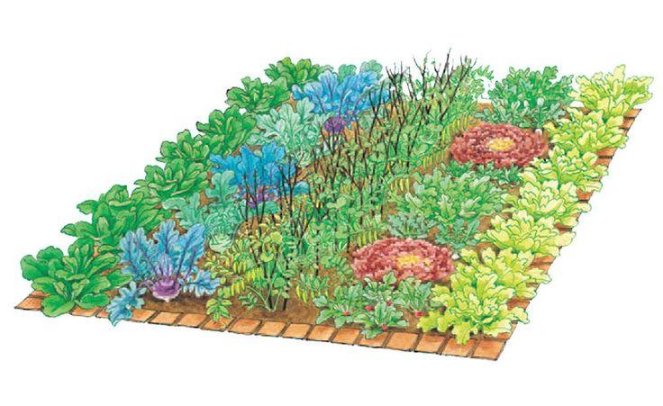 Tolles, praktisches Beispiel für Mischkultur im Jahreszeitenlauf in einem kleinen Gemüsebeet.