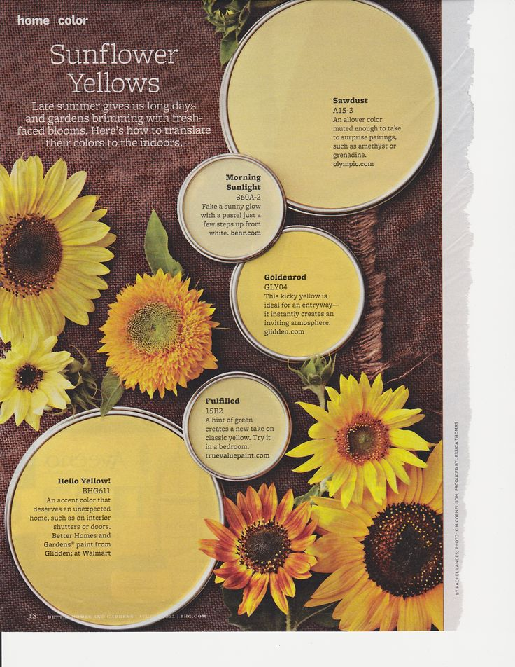 Yellow paint colors from Better Homes and Gardens mag                                                                                                                                                                                 More