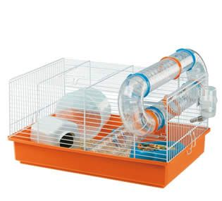 hamster sirio - Buscar con Google
