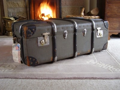29 best trunks and cases images on pinterest