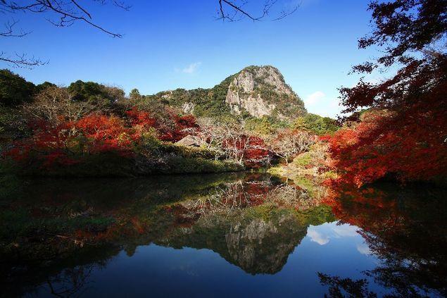 """【御船山楽園の紅葉情報】鍋島藩第28代武雄領主の鍋島茂義が、狩野派の絵師を京都から招いて完成予想図を描かせ、約3年かけて造られた池泉回遊式庭園で、壮大で荘厳な美しさを誇る。東京ドーム約10個分に当たる広さがあり、特に御船山が湖面に映り込むひょうたん池、ふりむき坂では約500本の深赤色に染まった紅葉が楽しめる。また、2017年11月3日(金)から12月10日(日)に行われる夜間の紅葉ライトアップでは庭園各所を周回できるように散策路を照らすことで、池泉回遊式庭園ならではの紅葉狩りができる。さらにライトアップエリアも庭園上部の樹齢170年の大モミジまで拡大され、2014年の約9万9000平方メートルから2015年は約13万2000平方メートルとなり、日本最大級の庭園ライトアップが満喫できる。ウォーカープラスの""""紅葉名所2017""""では、全国約700ヶ所の紅葉情報を掲載 !"""