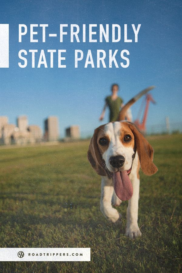 Pet-Friendly State Parks.