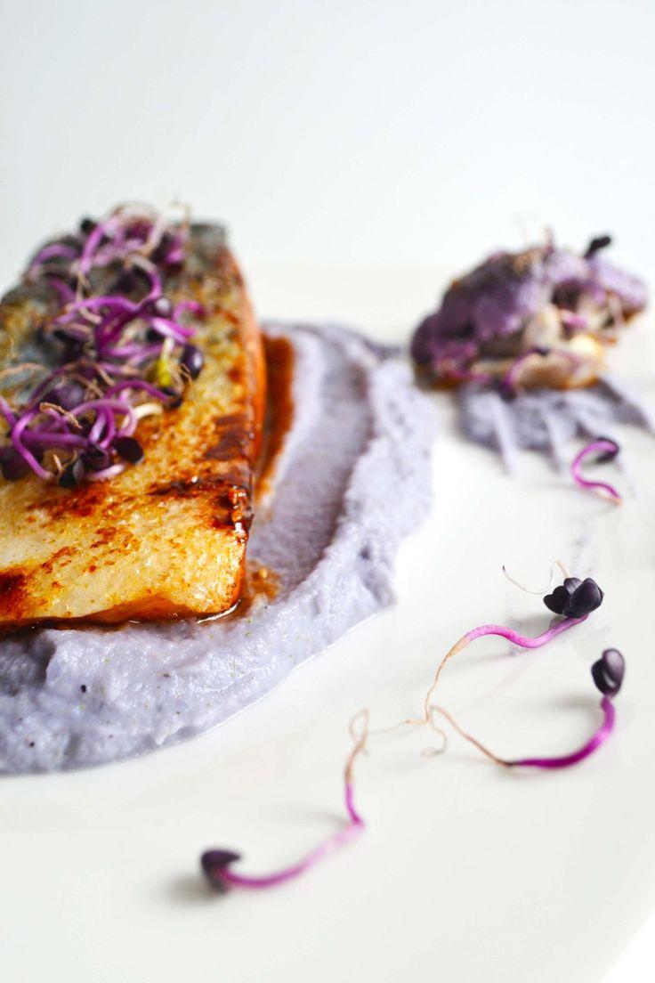 Salmone al miele e sesamo con purea di cavolfiore viola e germogli di ravanello rosso