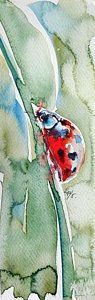 Ladybird Art Print by Kovacs Anna Brigitta