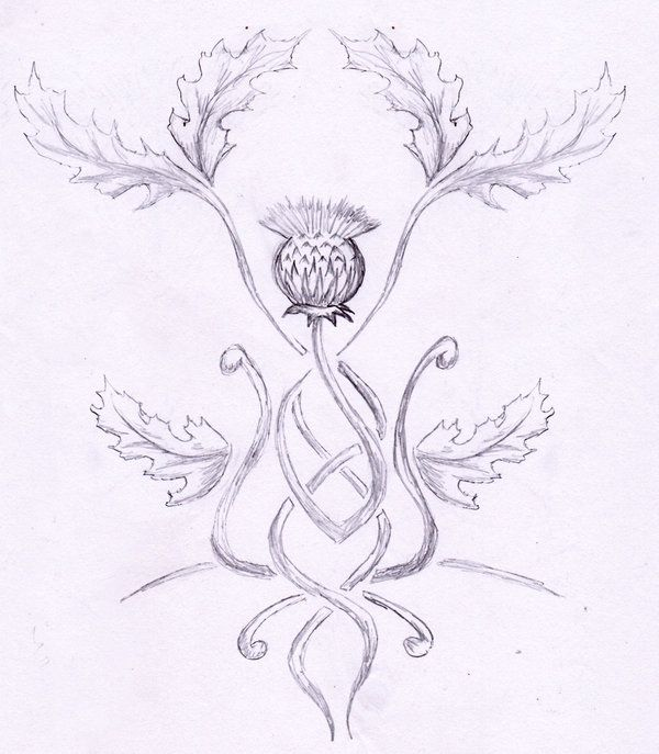 thistle tattoos gallery | tattoo thistle by rainingcrow on deviantART
