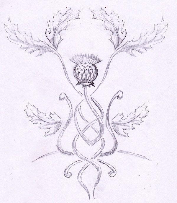 thistle tattoos gallery | tattoo thistle by rainingcrow on deviantART