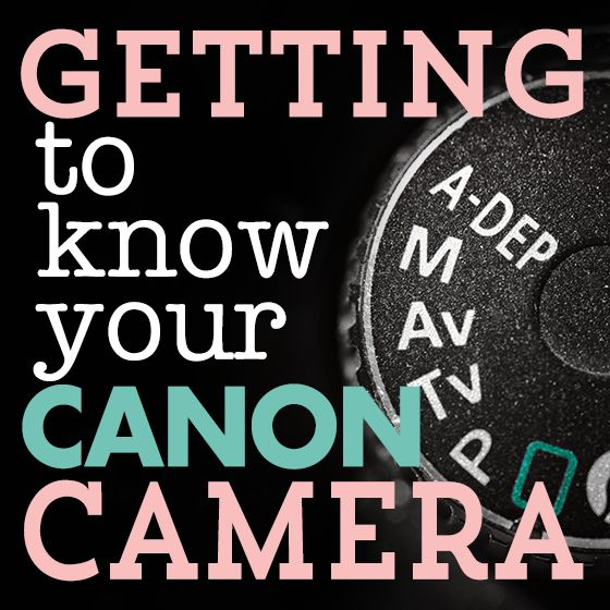 Daily Mom » Getting to Know Your CANON Camera: DSLR Buttons. By Ashley Sisk. Photo Credit: Ashley Sisk. http://dailymom.com/capture-2/getting-to-know-your-canon-camera-dslr-buttons/