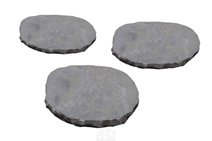 Stapsteen Basic Spotted Bluestone