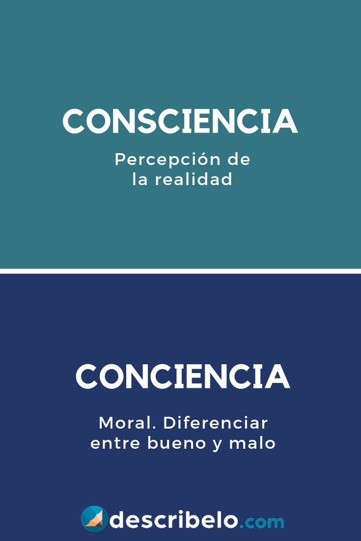 Consciencia o conciencia   Palabras de ortografía, Palabras de vocabulario, Palabras ortograficas