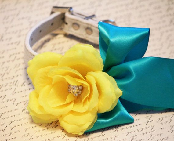 Teal blue Yellow wedding dog collar by LADogStore, $38.50